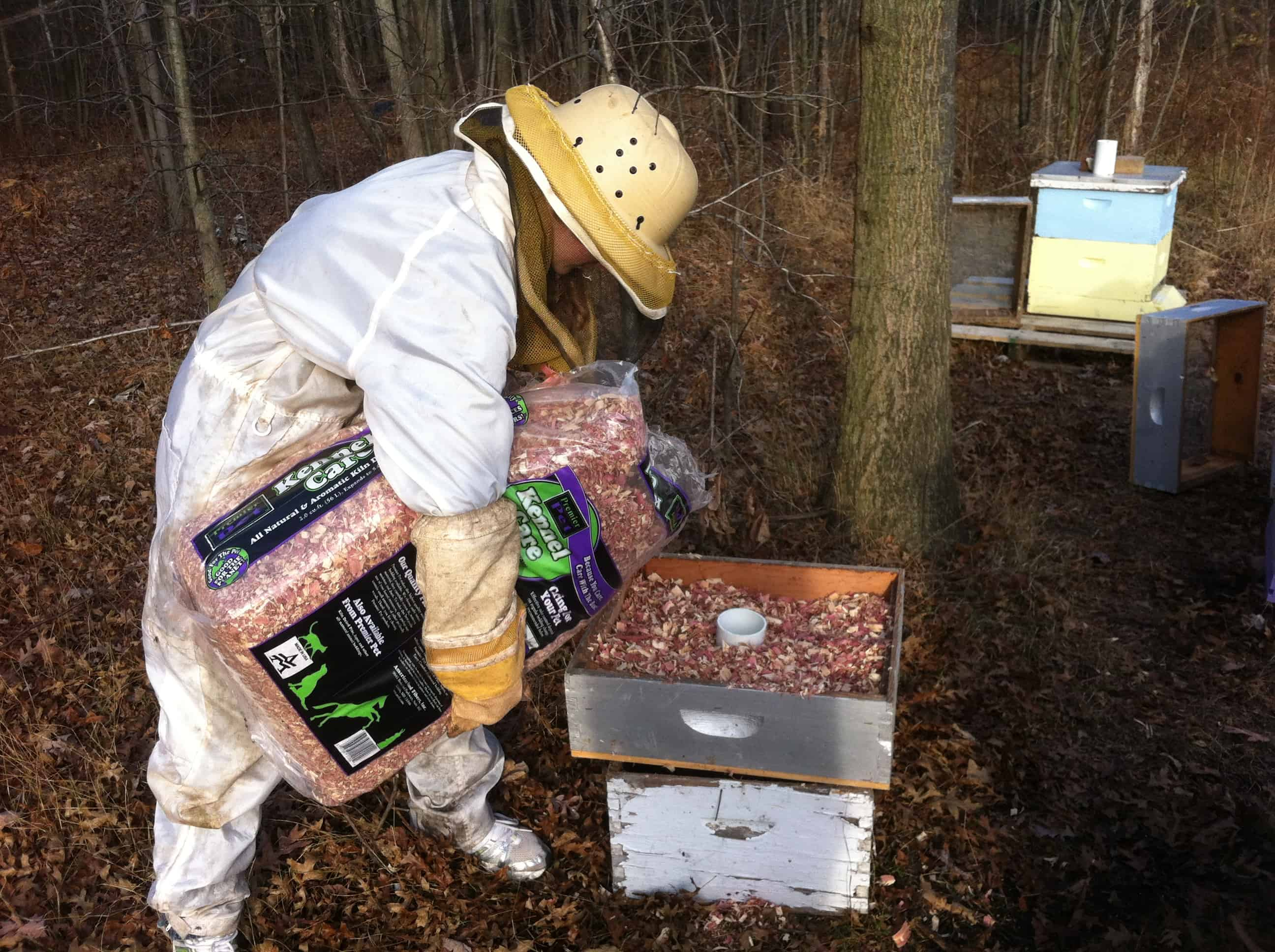 Wintering Bees in Michigan | Hudsonville Honey