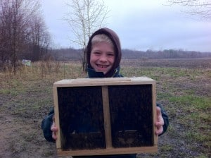 A three pound package of bees is a popular way to get a colony of bees started.