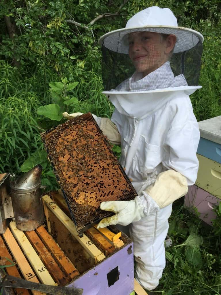 Luke in bee suit holding a frame of brood.
