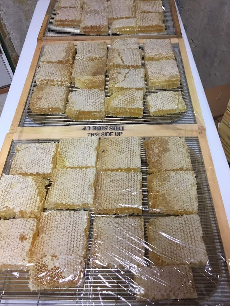 cut comb honey