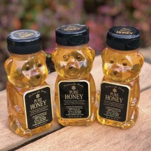Three 8oz honey bears